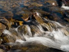Free Forest Stream Rift Royalty Free Stock Photos - 4004238
