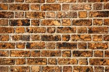 Free Brick Wall Royalty Free Stock Images - 4004269