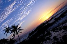 Free Tropical Sunset 1.1 Royalty Free Stock Photography - 4005857