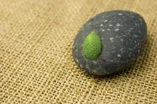 Zen Stone And Leaf Royalty Free Stock Photography