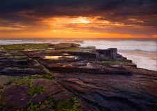 Free Sunrise On Pacific Ocean Royalty Free Stock Photography - 4007797