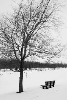 Free Winter Park Bench Stock Photo - 4009320