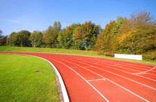 Runners Racetrack Surrounded By Trees Stock Images