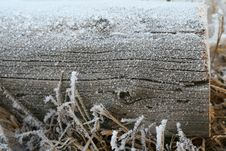 Winter Log Royalty Free Stock Photo