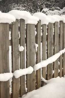 Free Frozen Fence Royalty Free Stock Photography - 4012947