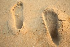 Barefoot Prints On The Beach Royalty Free Stock Images