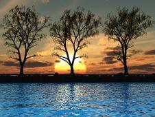 Free Tree Line Stock Images - 4014324