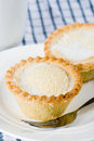 Free Two Mince Pies On A Plate Royalty Free Stock Photography - 4024767