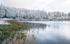 Free Winter Lake Tucked Among The Forest Royalty Free Stock Image - 4020786
