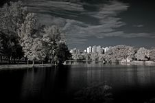 Infrared Photo – Tree, Lake And Building Stock Photos