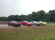 Free Row Of Vintage Mustangs Stock Photo - 4022100