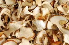 Free Dry Mushrooms Stock Images - 4022364