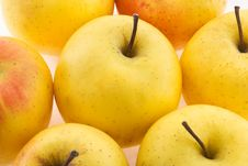 Yellow Apples Stock Photography