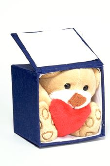Free Bear In A Box Royalty Free Stock Image - 4023106