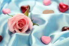 Free Valentin Rose - Love Stock Image - 4024141