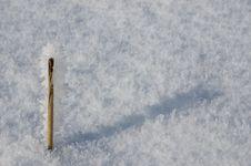 Free Frozen Stick Stock Photo - 4024950
