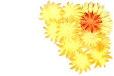 Free Orange And Yellow Flower Corner Stock Image - 4025141