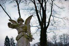 Free Angel I Royalty Free Stock Photography - 4028207