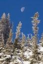 Free Mid Winter Moon Rise Stock Photo - 4030200