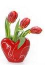 Free Tulips In Vase Royalty Free Stock Photos - 4031208