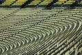 Free Football Stadium Stock Photo - 4032270