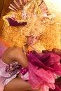Free Extravagant Make-up Stock Image - 4038711