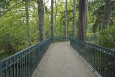 Free Bridge In The Forest Stock Photography - 4030462