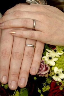 Free Wedding Hands And Rings Stock Image - 4030981