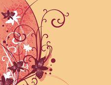 Free Ornamental Floral Design Stock Photo - 4031560