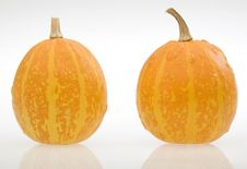 Free Pumpkins Stock Images - 4032984