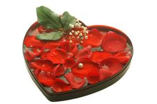 Free Valentine Heart With A Rose Petals Stock Images - 4033024