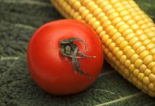 Free Tomato And Corn Royalty Free Stock Images - 4036229