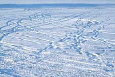 Free Tracks In Snow Stock Photo - 4036310