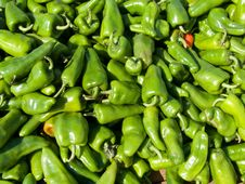 Free Lots Of Green Peppers Royalty Free Stock Images - 4037529