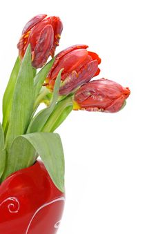 Free Red Tulips In Vase Stock Photo - 4037900