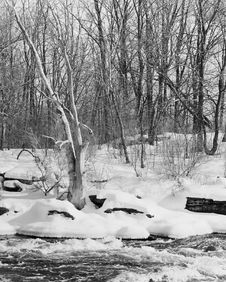 Free Winter Scene Ontario Canada Royalty Free Stock Photos - 4038328
