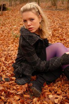 Autumn Portrait Royalty Free Stock Photos