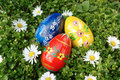 Free Easter Eggs In Grass Stock Photos - 4044733