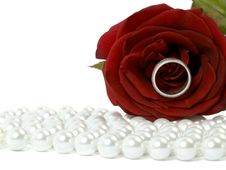 Free Rose With A Ring Royalty Free Stock Image - 4040506