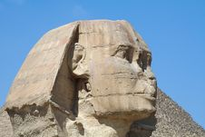 Free Head Of Sphinx Royalty Free Stock Photography - 4041577