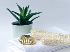 Spa Set With Aloe And Massage Oil Stock Photography