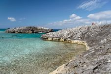 Free Caribbean Reef Royalty Free Stock Image - 4042016