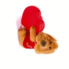 Dog With Heart Royalty Free Stock Image