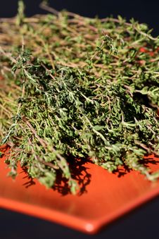 Free Fresh Thyme Royalty Free Stock Photos - 4043838