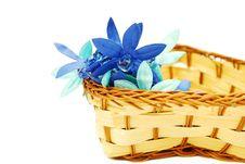 Free Basket Royalty Free Stock Photo - 4044475