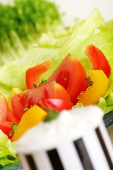 Free Fresh Salad And Cream Cheese Stock Image - 4045211