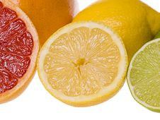 Free Sliced Citrus Fruits Royalty Free Stock Photography - 4046867