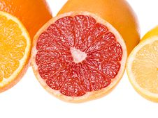 Sliced Citrus Fruits Royalty Free Stock Image