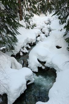 Free Snow At Denny Creek Stock Photos - 4049943