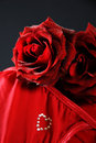 Free Red Roses On Cushion. Stock Photography - 4059432